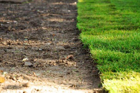 Kante eines Rollrasens » Braun Gartenform